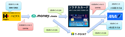 ANAmile_network