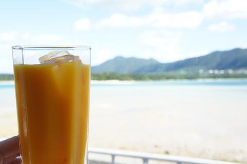 川平湾 マンゴージュース